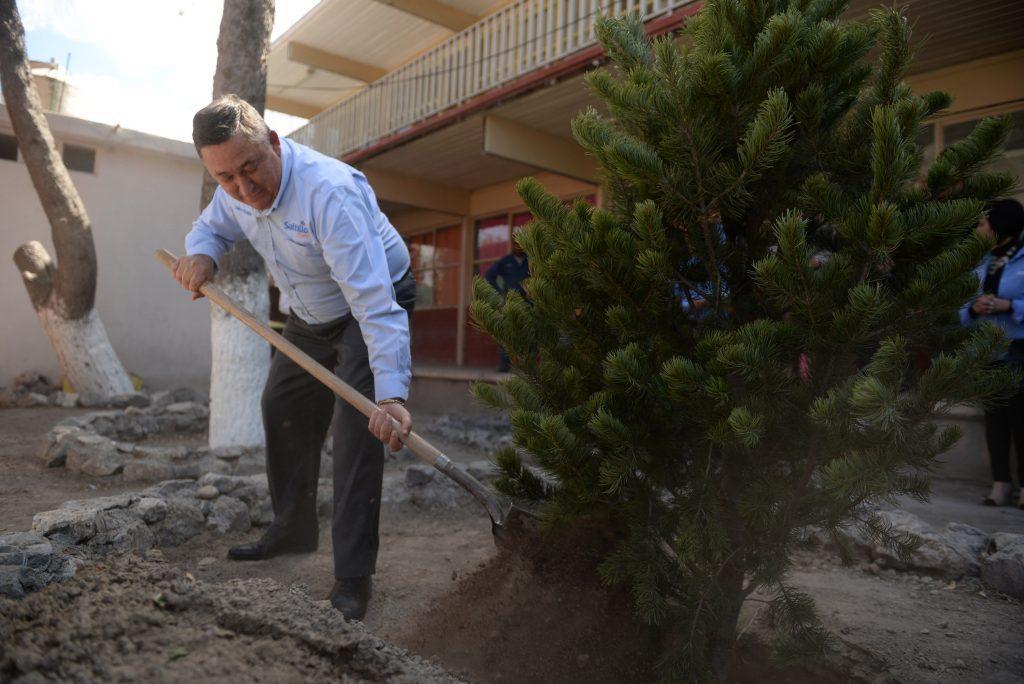 Refuerza Saltillo campaña de cuidado a los árboles (3)