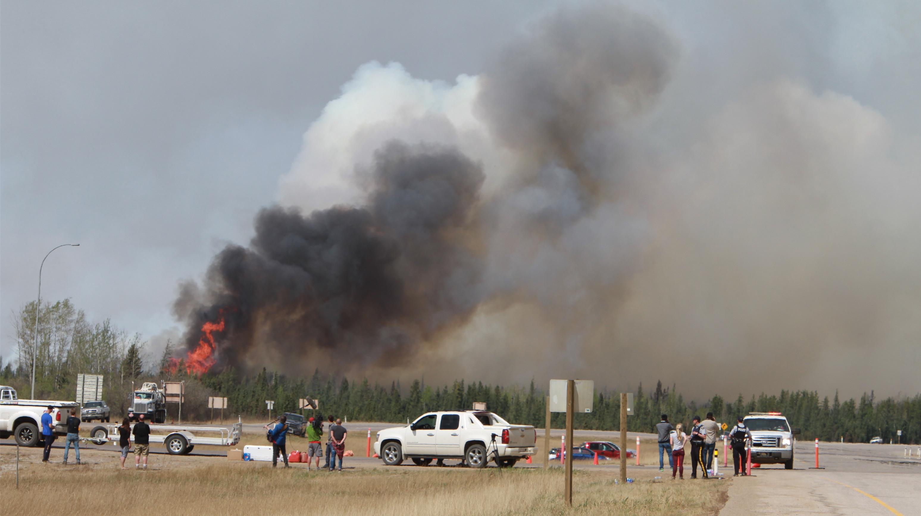 El Heraldo de Saltillo – Los incendios forestales impactan al sector ...