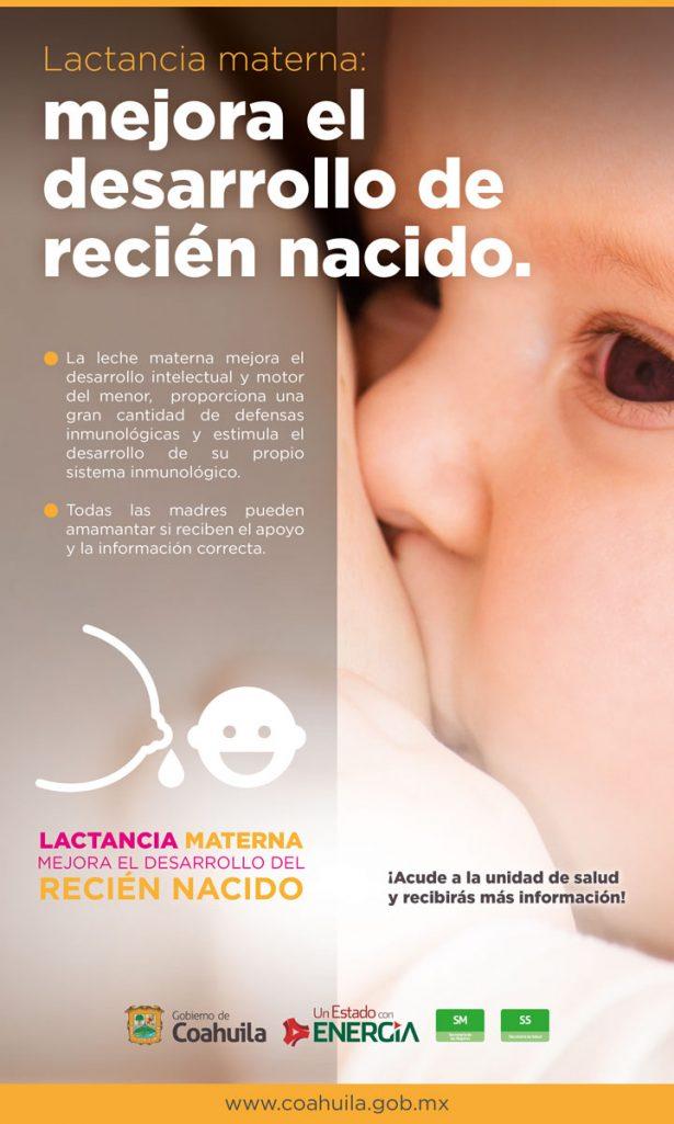 Roba-plana_Lactancia-materna_Desarrollo2_24x40