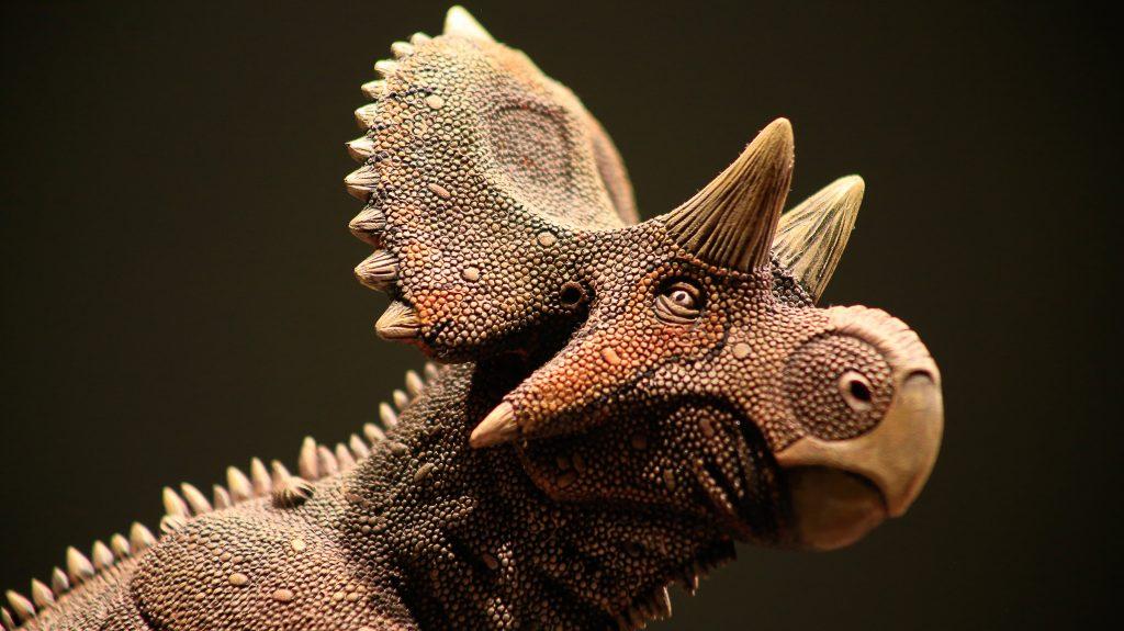 Resultado de imagen de yehuecauhceratops mudei