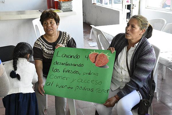 Impulsa Sedesol Campaña Educativa en Alimentación en comedores comunitarios