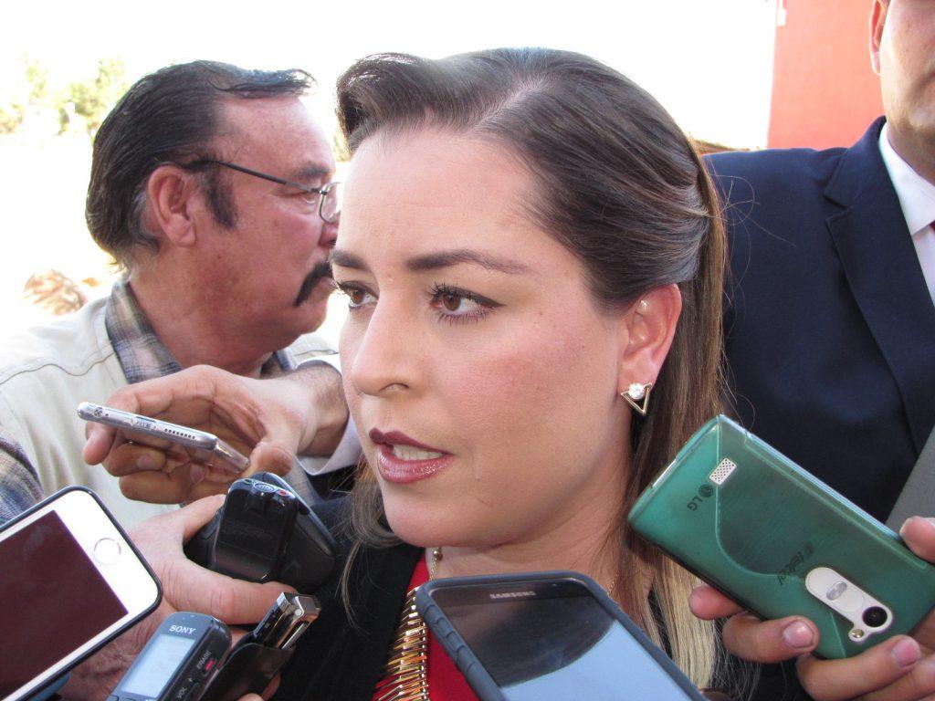 AMLO y Delfina pedirán nulidad en 5 distritos de Edomex