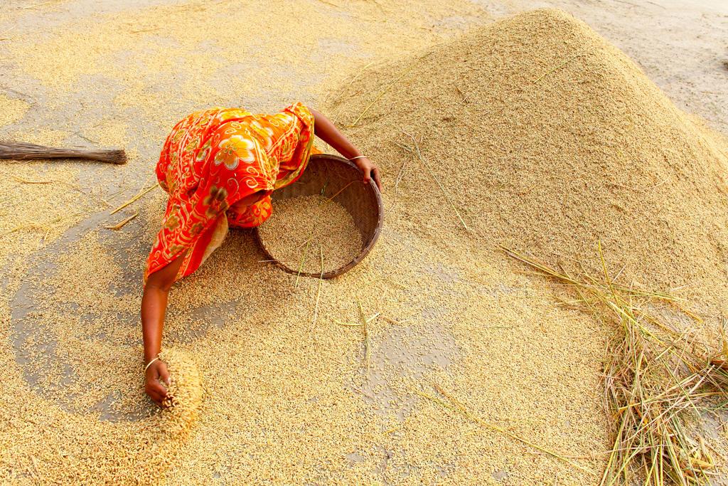 El Índice de Precios Alimentarios de la FAO sube en junio